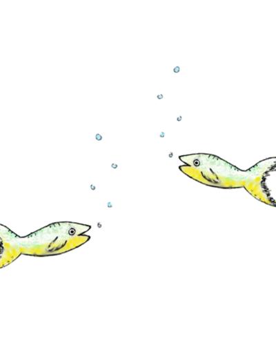 2 Fische